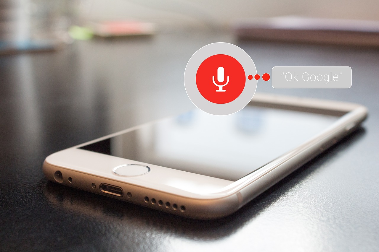 voice based search